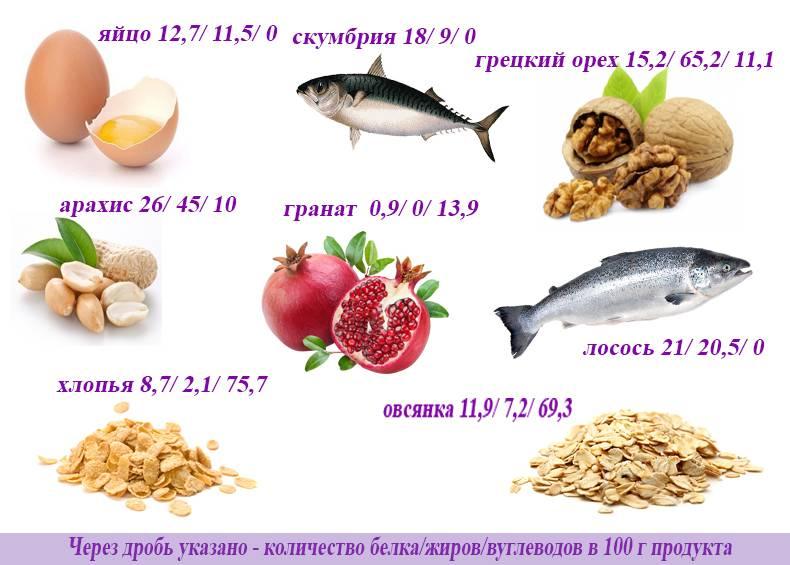 Какие питательные вещества являются источником энергии