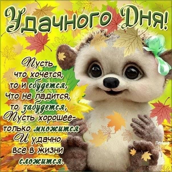 Пожелания хорошего дня своими словами