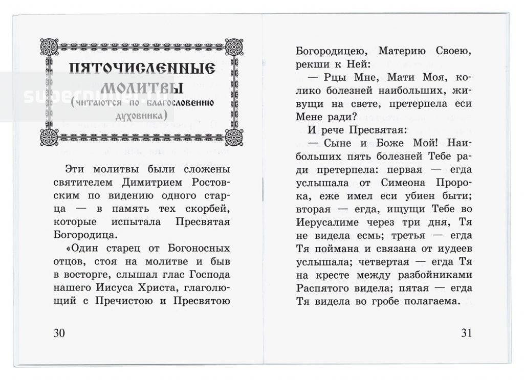 Богородичное правило: как правильно и сколько дней читать, полный текст на русском языке