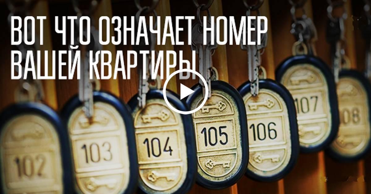 Нумерология. влияние номера квартиры и дома на вашу жизнь - страна мам