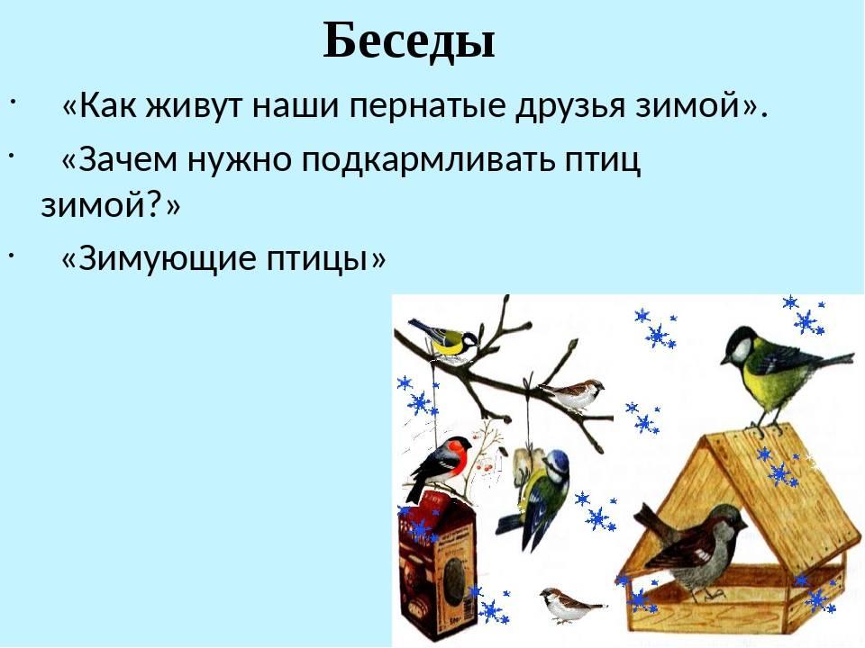 Что означает найти перо птицы: объяснение примет и суеверий