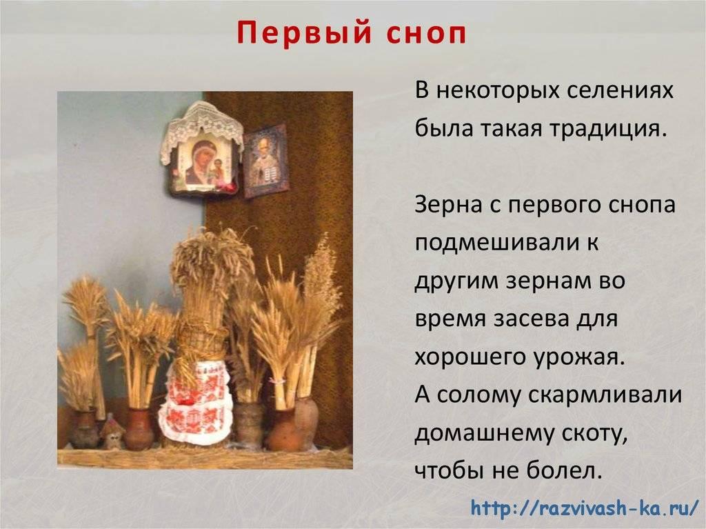 За сколько дней испортится мясо курицы при комнатной температуре. kakhranitedy.ru