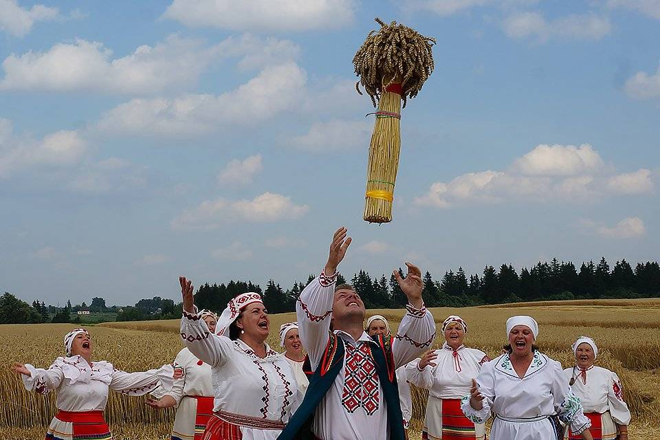 Вода потемнела засолки грибов. kakhranitedy.ru