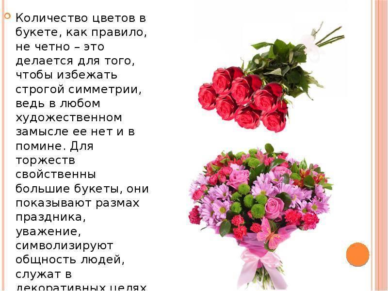 Что означает цвет роз и их количество на языке цветов