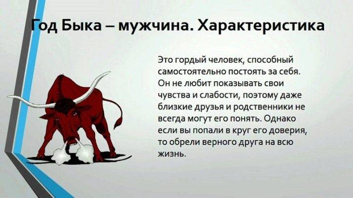 Мужчина бык – характеристика года рождения