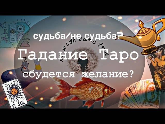 Правила гадания Золотая рыбка сбудется желание или нет
