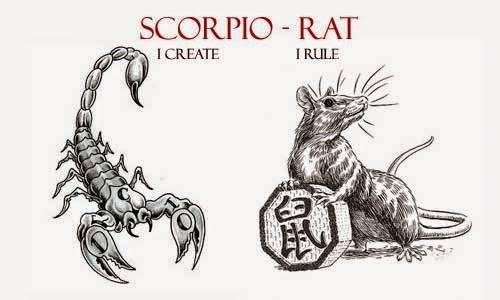 Крыса по гороскопу  - характер и судьба | год крысы - какие года