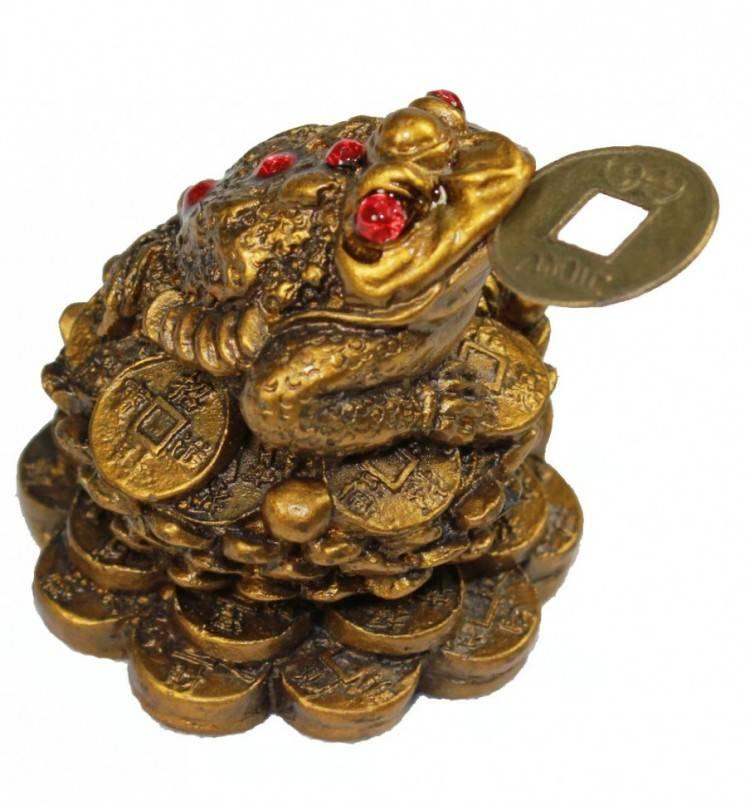Талисман денежная лягушка с монеткой: куда и как ставить, как правильно использовать, фото