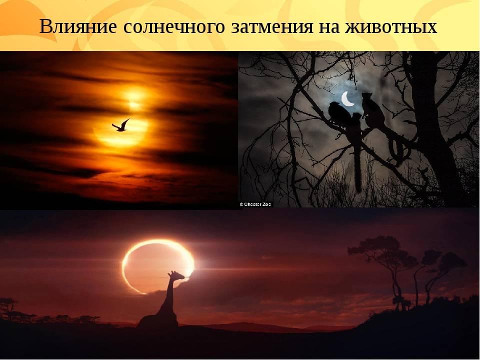 Влияние солнечного затмения на человека и его судьбу