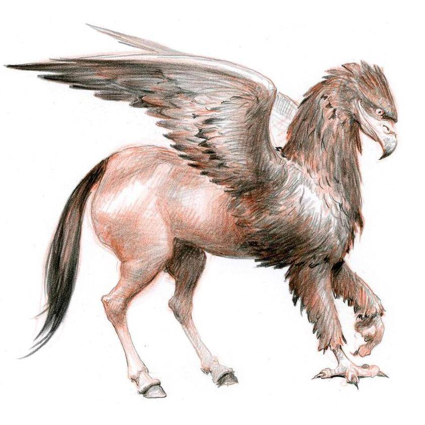 Рубеус хагрид - rubeus hagrid - xcv.wiki