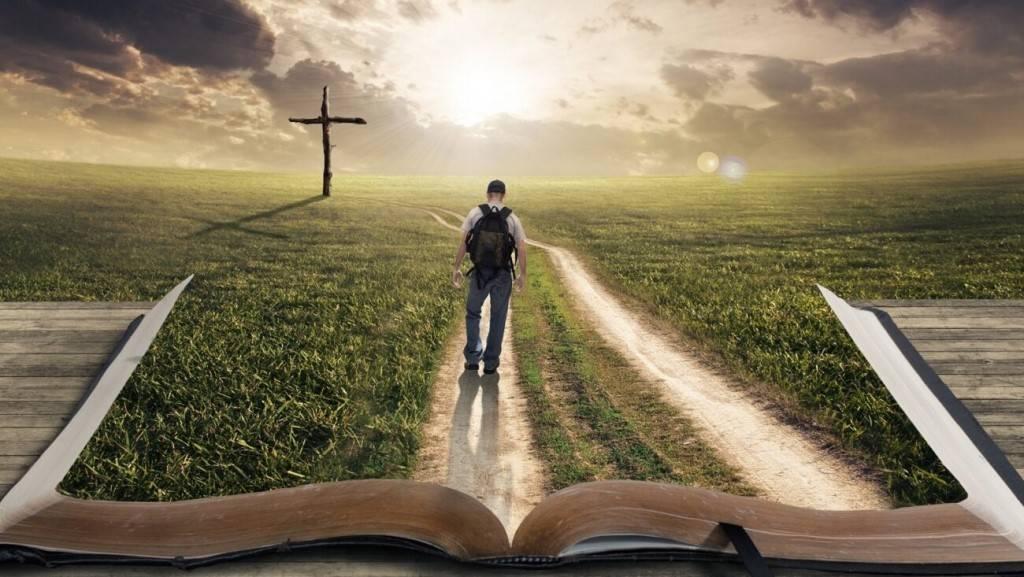 Судьба – это умение принимать мудрые решения