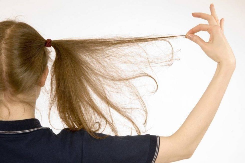 К чему снятся волосы по соннику? видеть во сне волосы – толкование снов.