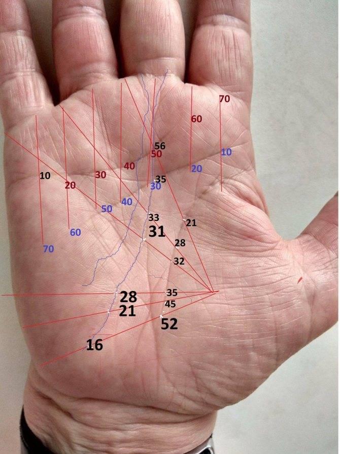 Треугольники на ладони — что означают по хиромантии