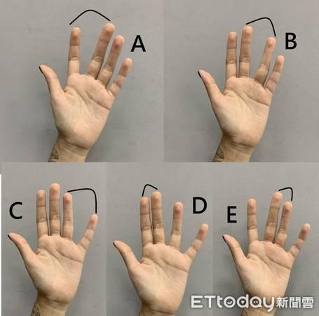 Типы руки - зная их, можно сразу понять человека