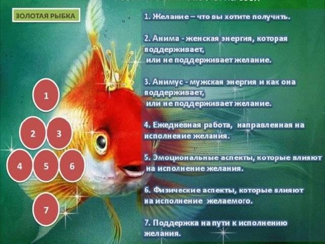 Гадание «золотая рыбка» на осуществление желаний