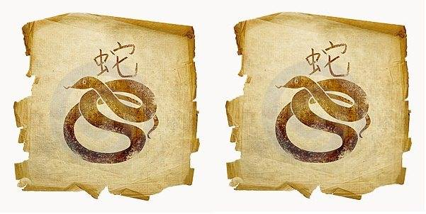 Змея - гороскоп совместимости | совместимость змеи в любовных отношениях