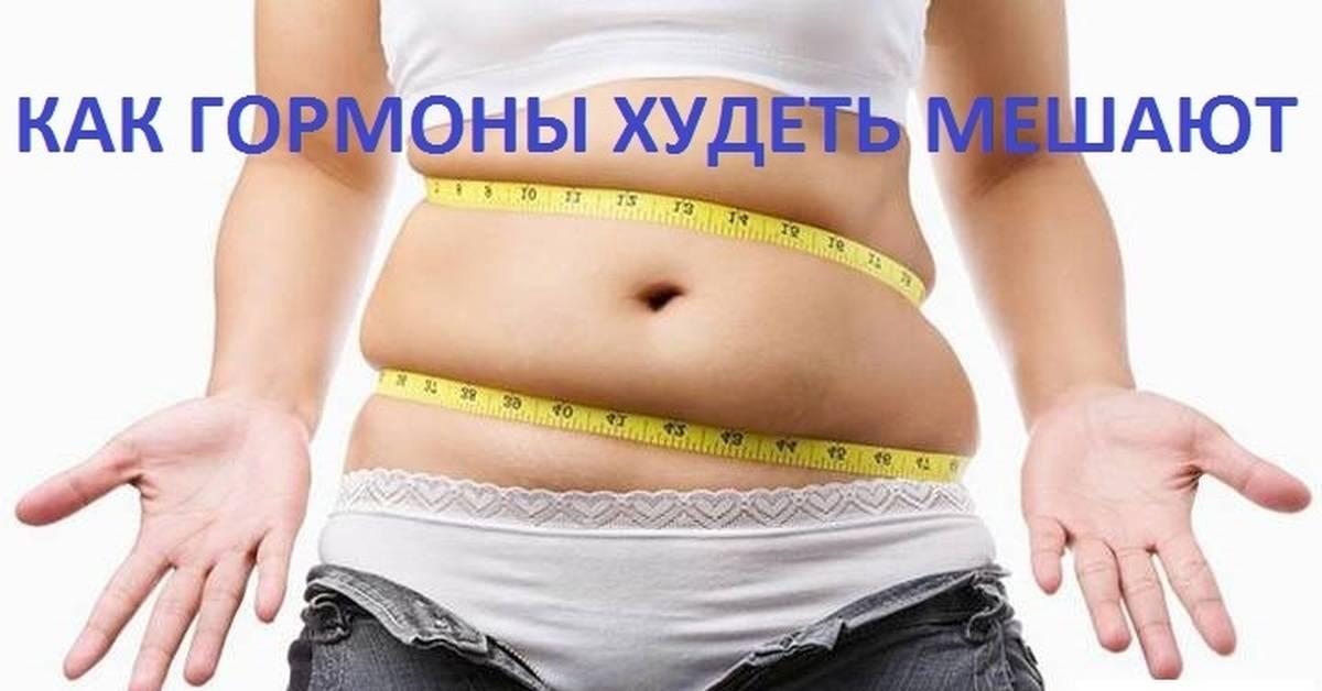 26 вопросов психологам о похудении, которые вы хотели задать