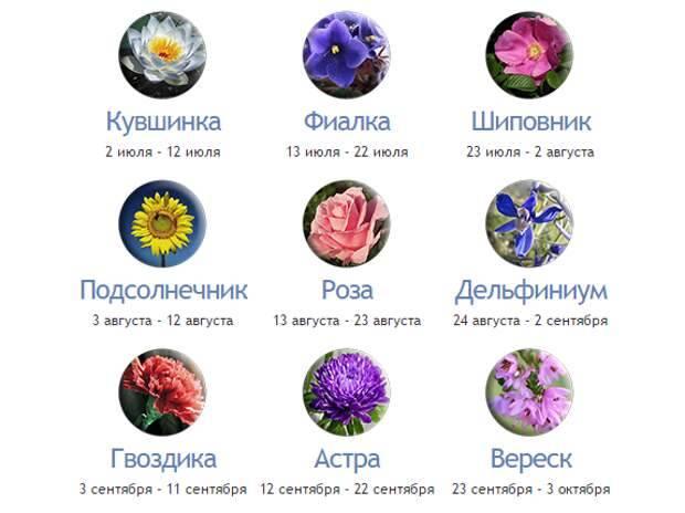 Благоприятные цвета для каждого знака зодиака! - гороскоп - медиаплатформа миртесен