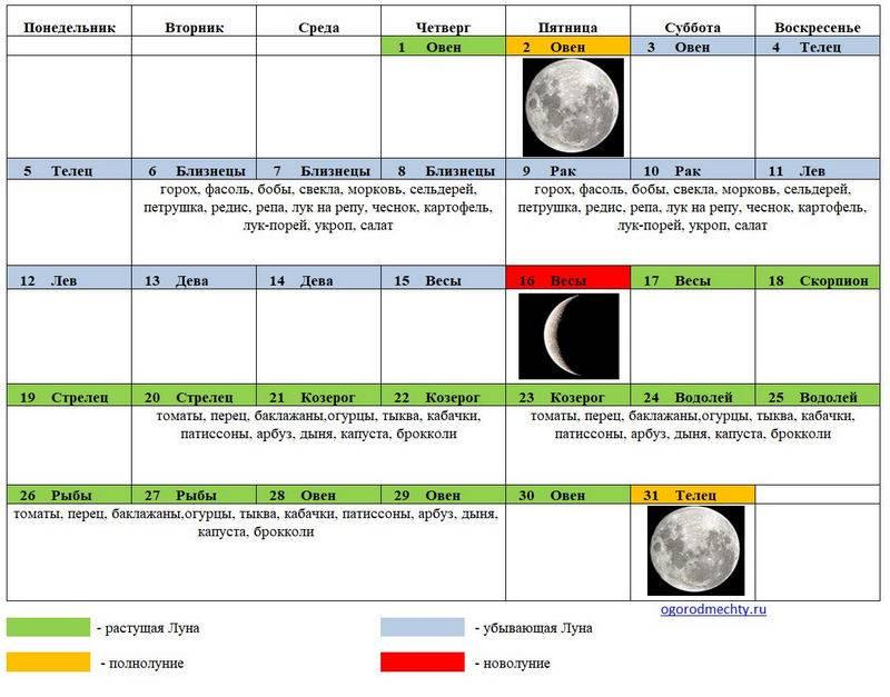 Лунный календарь свадеб на июнь 2021 года