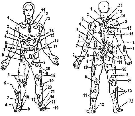 Полная схема акупунктурных точек на теле человека