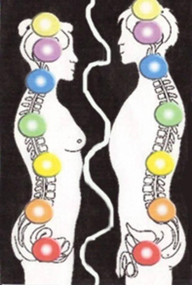 Энергообмен между мужчиной и женщиной по чакрам - взаимодействие мужчины и женщины на уровне чакр