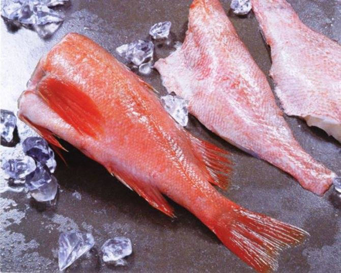 Сонник рыбу замороженную воровать. к чему снится рыбу замороженную воровать видеть во сне - сонник дома солнца