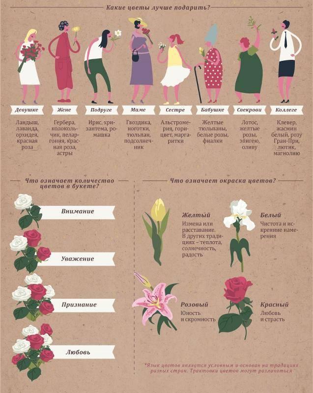 Цвета роз. значение и символика цвета розы. сколько роз дарить