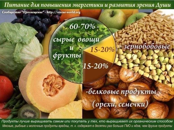 Аура пищи и ее биополе. Энергетика пищи