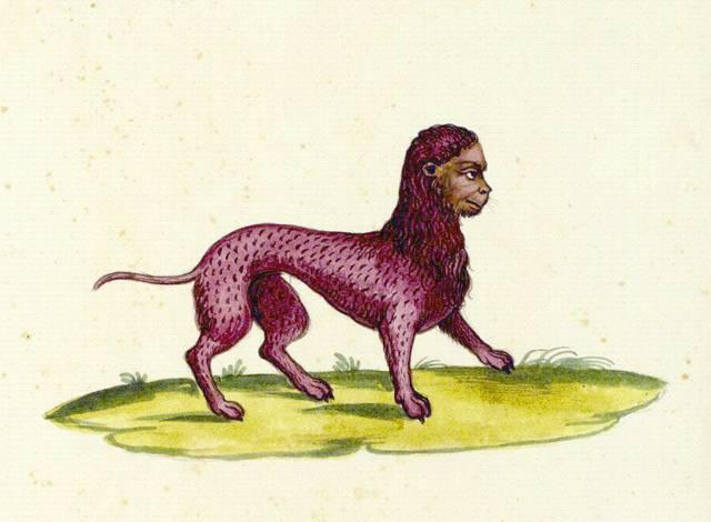 Мантикора зверь. мантикора — легендарное и непобедимое чудовище-людоед