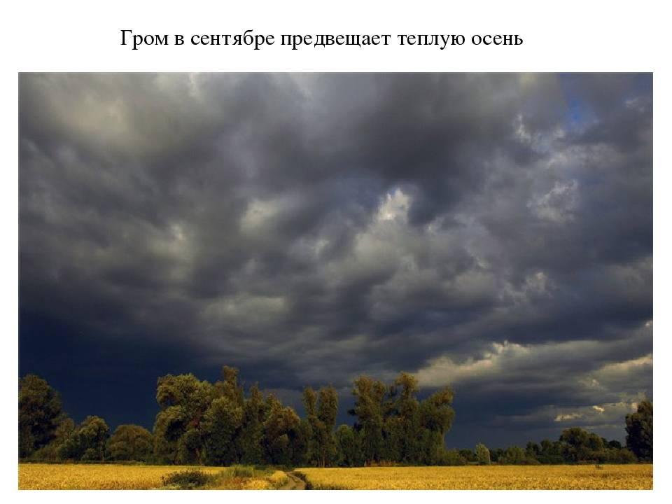 Народные приметы о погоде: по каким приметам можно определить, какая будет погода летом на supersadovnik.ru