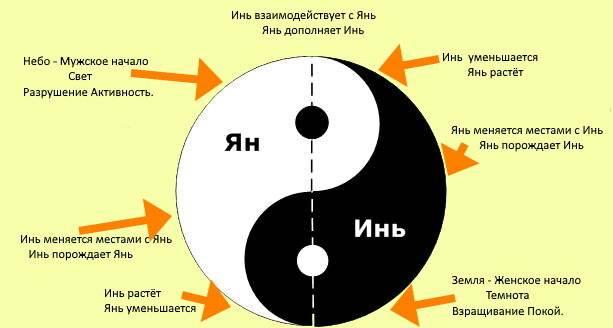 Значение инь янь в китайской культуре. что означает символ «инь-ян»? инь и ян — женское и мужское