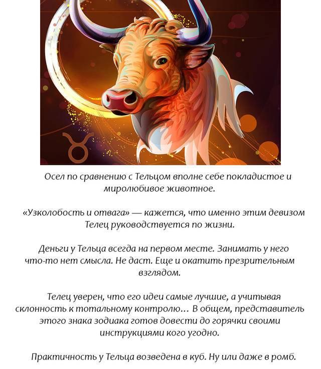 Женщина телец