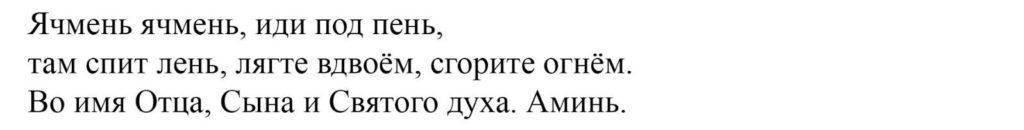 Ячмень