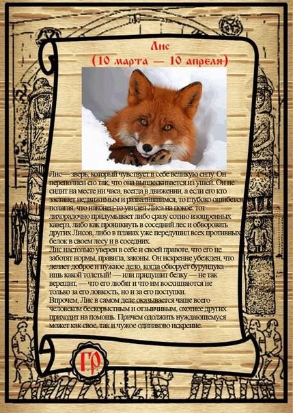 ???? славянский гороскоп по годам | тотемный гороскоп животных | старославянский годослов (летослов)