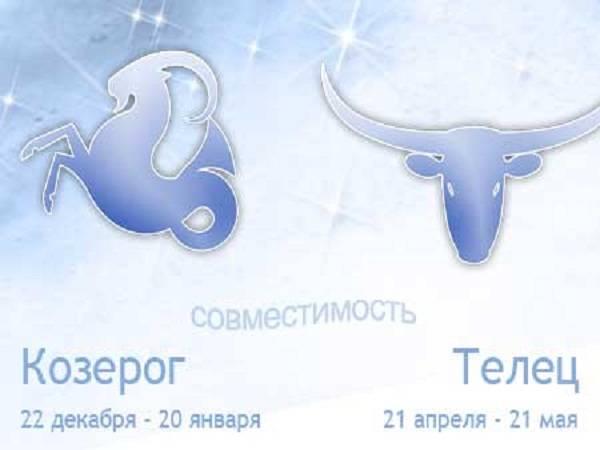 Гороскоп совместимости для пары женщина-телец – мужчина-телец: любовь и брак на 100%