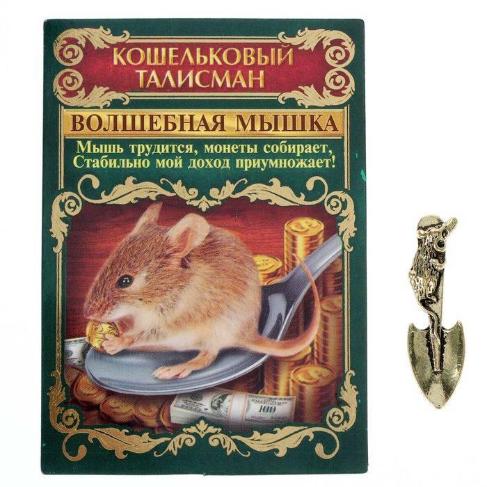 Мышь кошельковая — как выбрать и заговорить талисман для денег