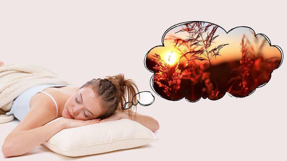 Сонник кровать без постели. к чему снится кровать без постели видеть во сне - сонник дома солнца