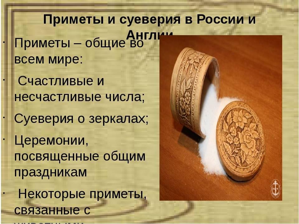 Драцена для дома - хорошо или плохо ( все приметы и суеверия )