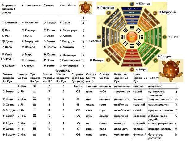 Число гуа в фен-шуй: расчет и определение своих благоприятных направлений