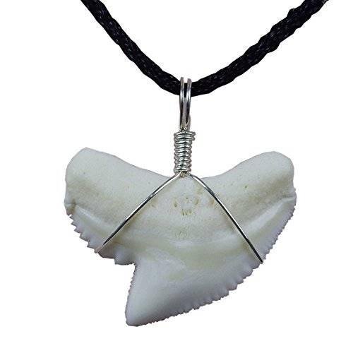 Акула – символ и тотем