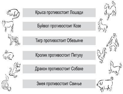 Свинья и свинья - совместимость знаков. мужчина-свинья, женщина-свинья: совместимость