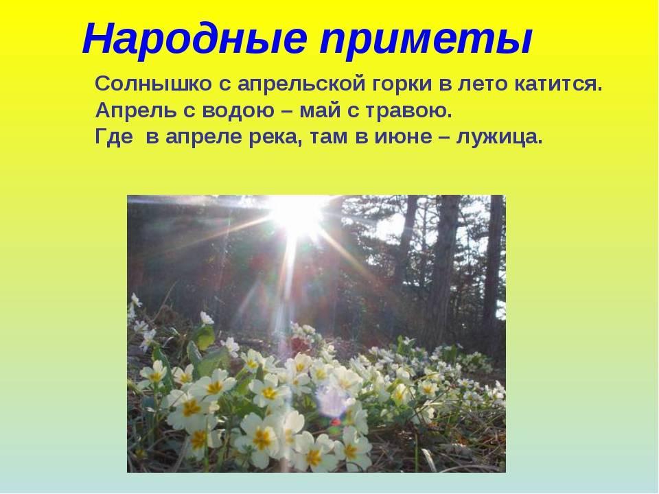Почему 4 апреля тому кто рано встанет, тому бог подаст? примета в васильев день