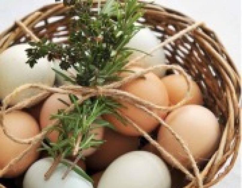 К чему снится много яиц: сырых, варёных, тухлых, разбитых, огромных? основные толкования к чему снится много яиц - автор екатерина данилова - журнал женское мнение
