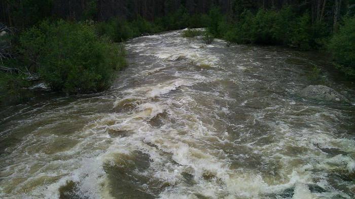 Если приснилась река