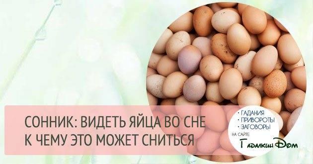 Приснились яйца, к чему снятся яйца, узнать значение сна