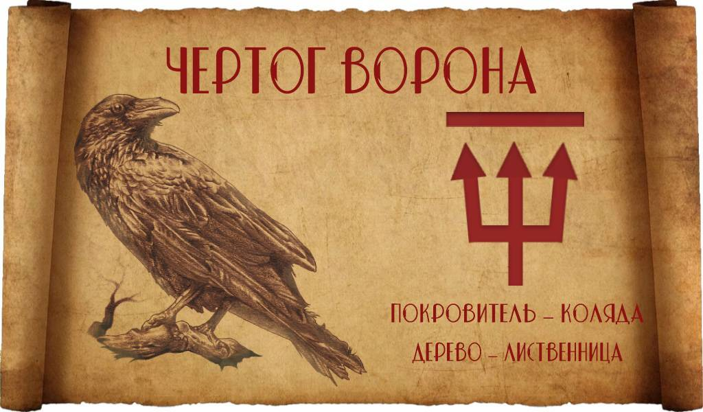 Чертог ворона: значение знака, покровитель и дерево силы
