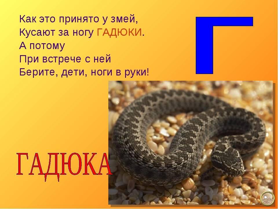 Укус большой змеи