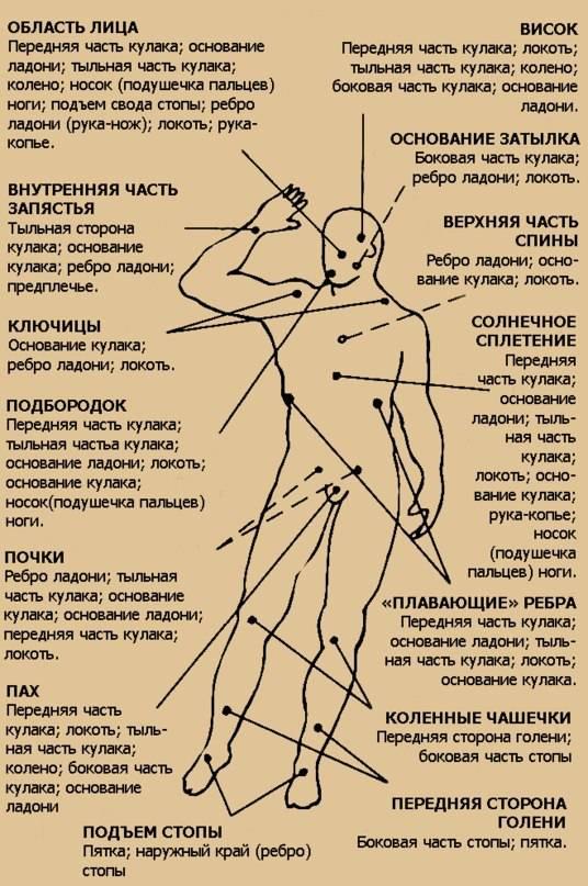 ✅ где расположены болевые точки на теле человека - схема - sport-nutrition-rus.ru