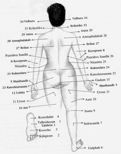 Пальпаторная диагностика по точкам акупунктуры