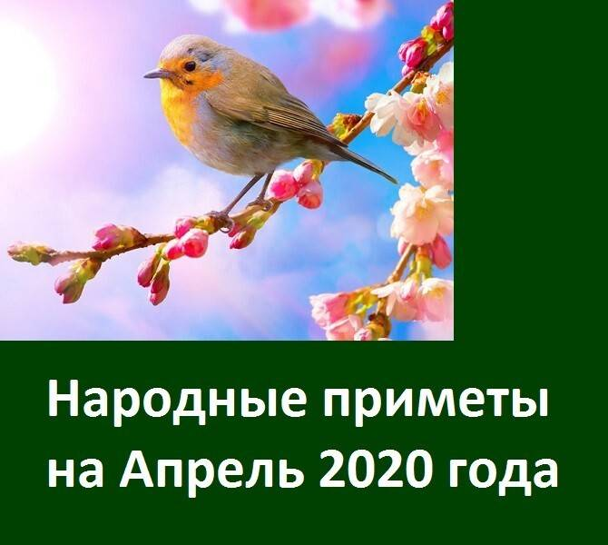 Народные приметы на хороший урожай: зимой, весной, летом, осенью
